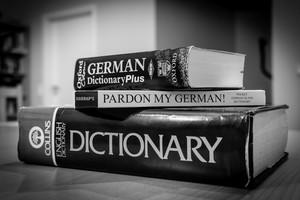 دانش زبان